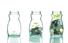 Crowdcube launches programme to help fund British seed-stage businesses