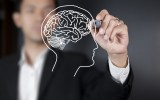 The importance of neuroscience in business