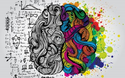 Reaching your potential in collaboration with your brain