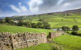 How rural businesses can benefit from apprenticeship schemes
