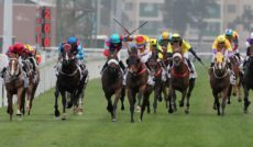 technology in horse racing