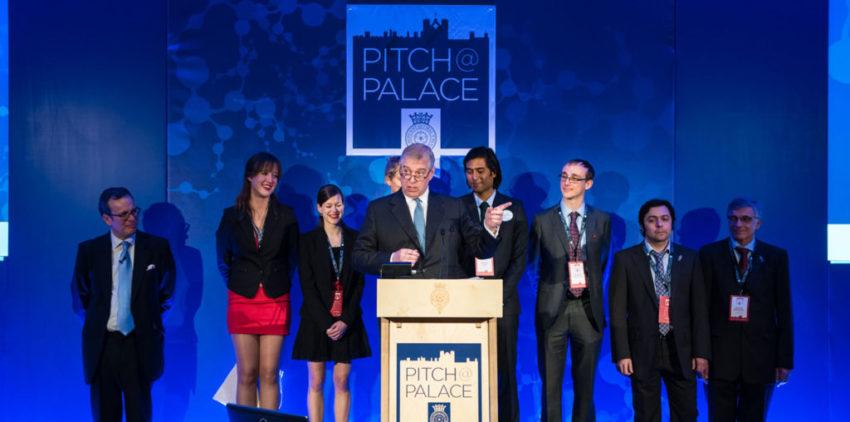 Pitch at Palace