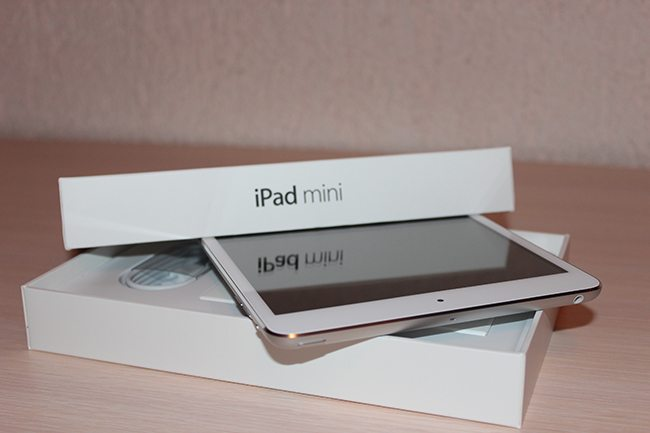 A Closer Look at The Mini iPad