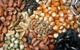 The Most Powerful Forms of Seed for Nutrition